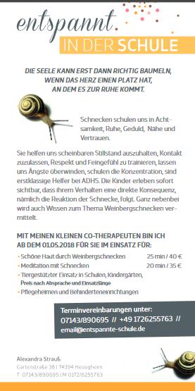 Schneckenflyer2